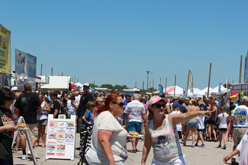 Shark Tooth Festival Venice Florida